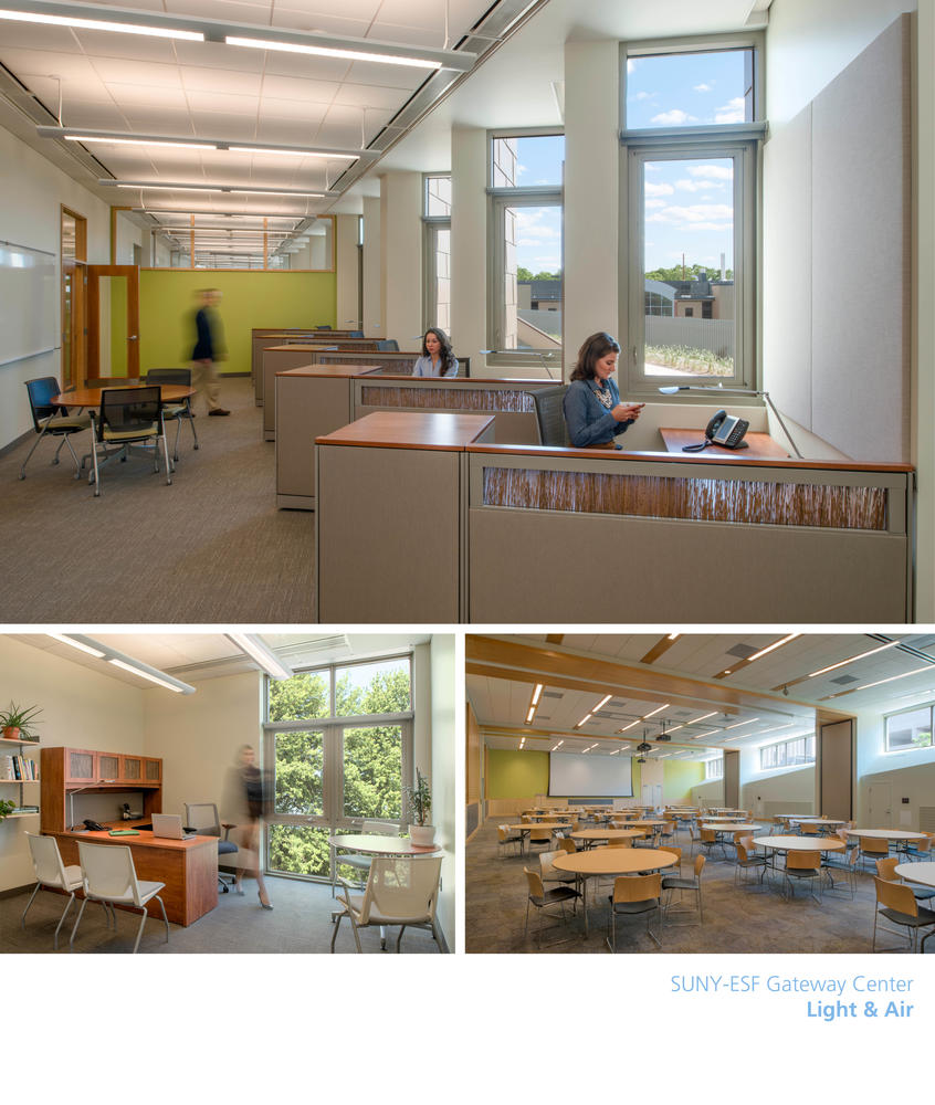project overview - Environmental Interior Design