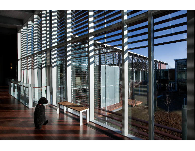 Inner Curtain Wall : World headquarters for ifaw aia top ten
